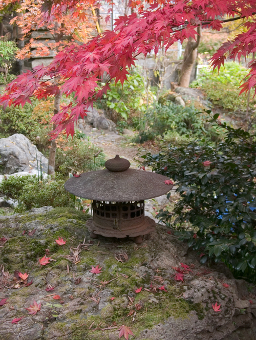 紅葉の下の灯籠
