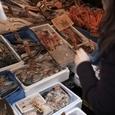 魚介類の並ぶ店頭