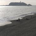 江ノ島を眺めて