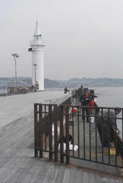 突堤の釣り