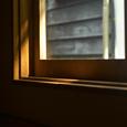 窓に係る木漏れ日