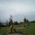 台風の爪痕