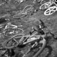 自転車そっちのけ