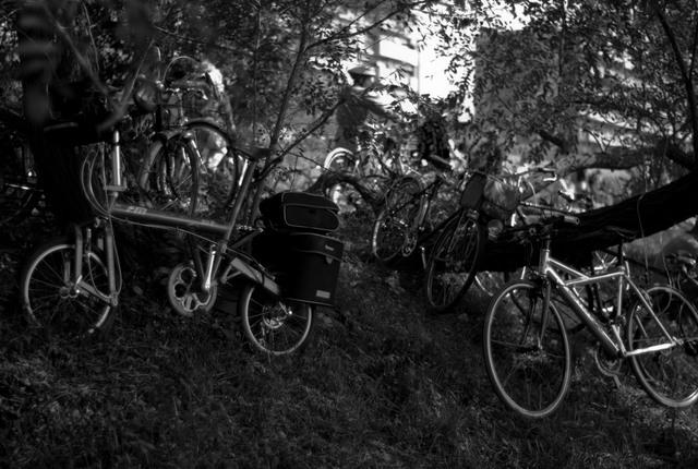 自転車の置き方