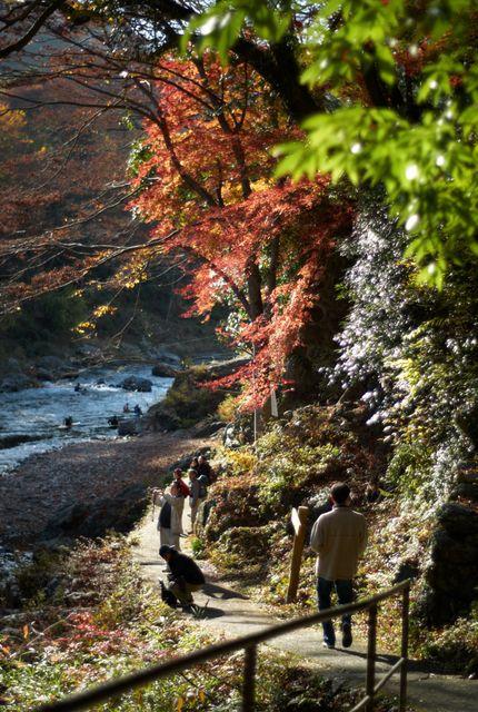 御嶽渓谷の秋