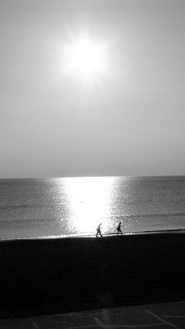 砂浜定番の写真