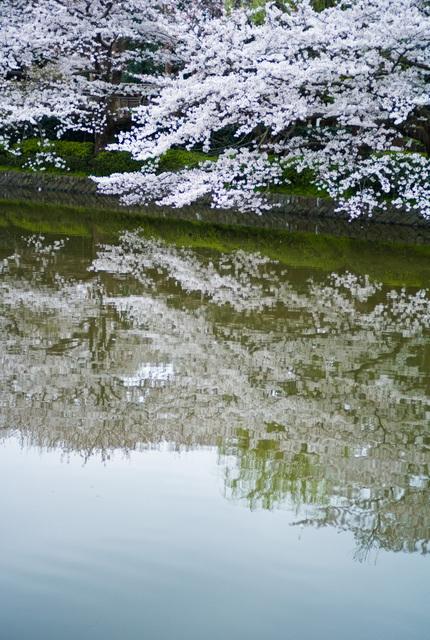 鶴岡八幡宮・その2