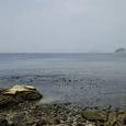 逗子から見た海