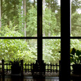 窓の外の風情