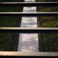 桜の川・その2