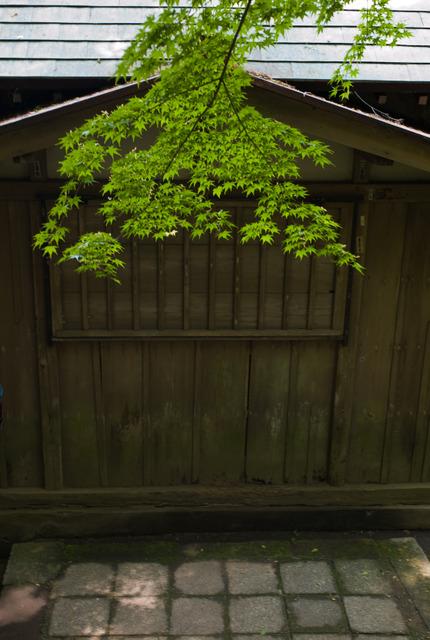 佐助稲荷神社・その2