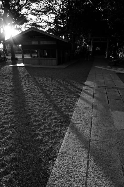 夕日の日が差す境内