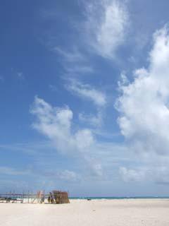 今日はハテノ浜